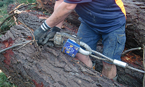 tree felling with loadshackle